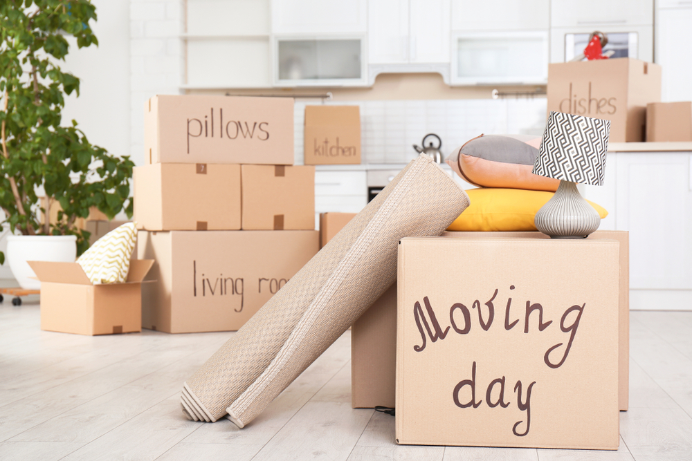 Essential Moving Equipment and Tools You Must Have for the Moving Process